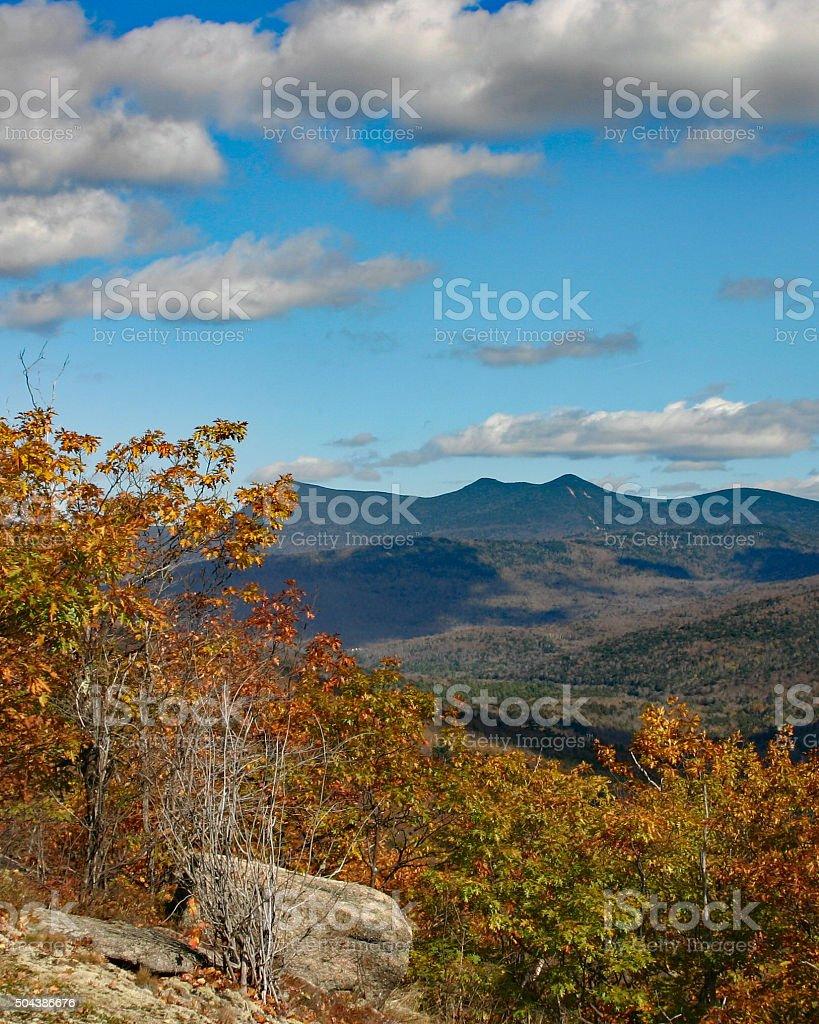 Feuillage d'automne et vue sur la montagne photo libre de droits