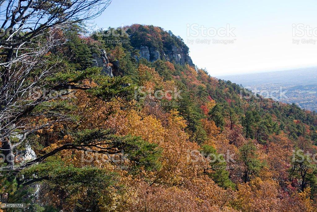 Fall Foliage on a Mountainside royalty-free stock photo