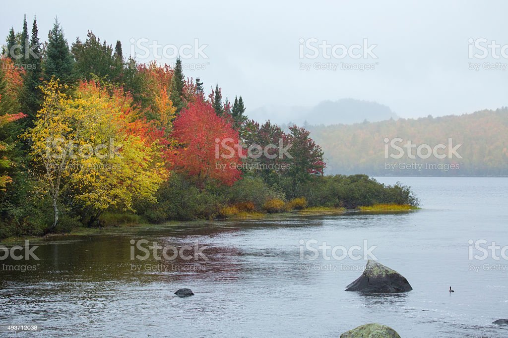 Fall foliage on shoreline of Sturdevant Pond in Magalloway, Main stock photo