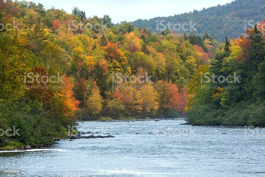 Fall foliage on the Androscoggin River near Errol, New Hampshire stock photo