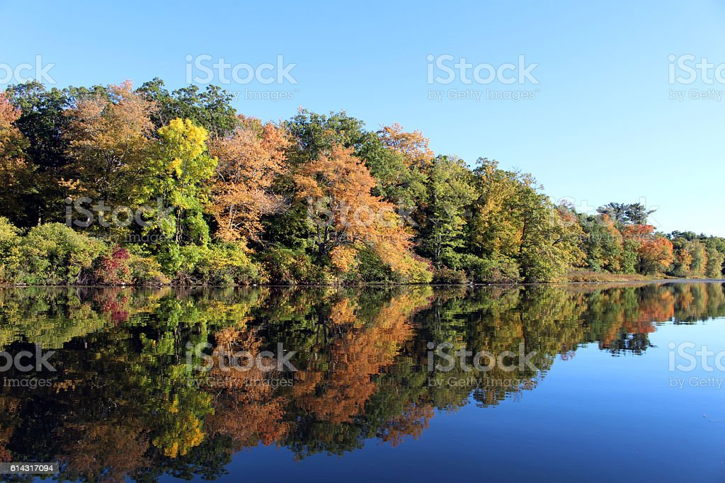 Fall Foliage on the Charles stock photo