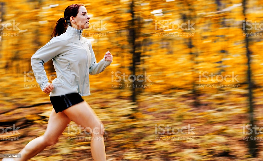 Fall Forest Runner royalty-free stock photo