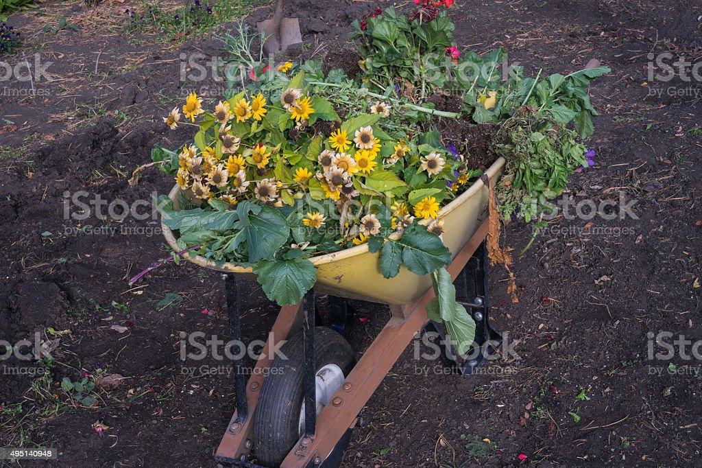 Fall garden clean up stock photo