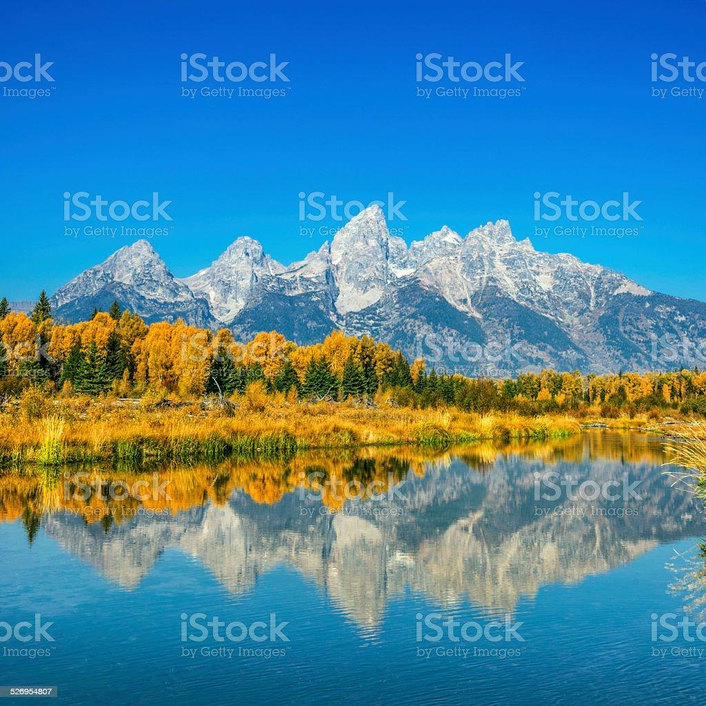 Fall glory at Grand Teton stock photo