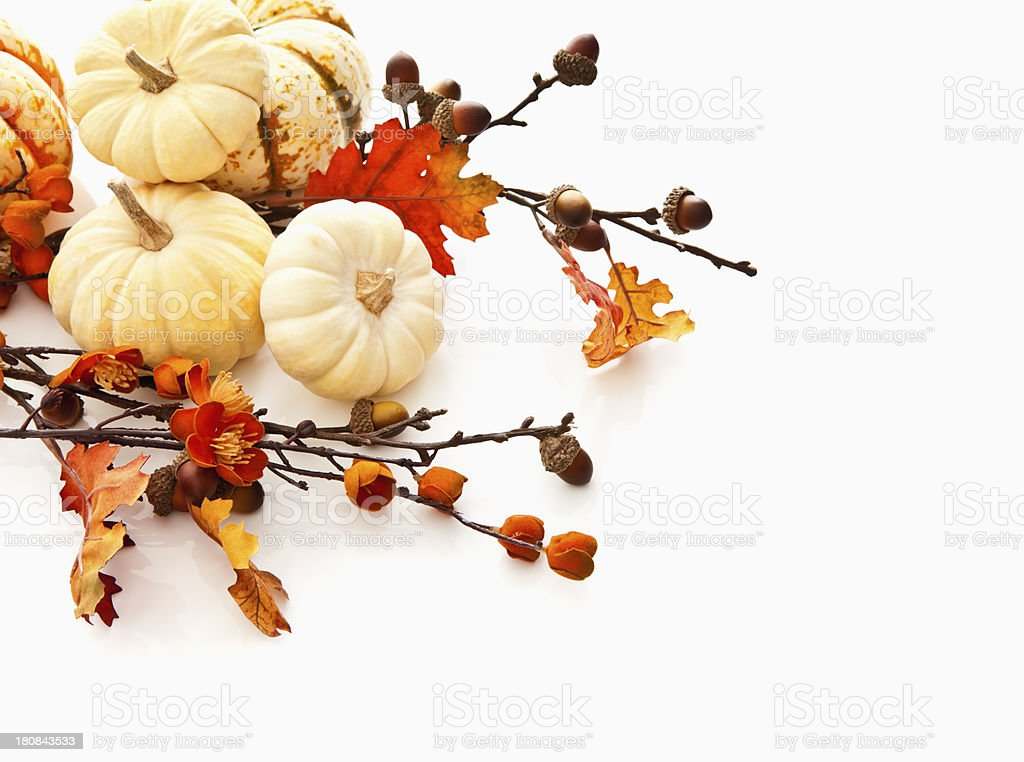 Fall Gourds and Leaves royalty-free stock photo