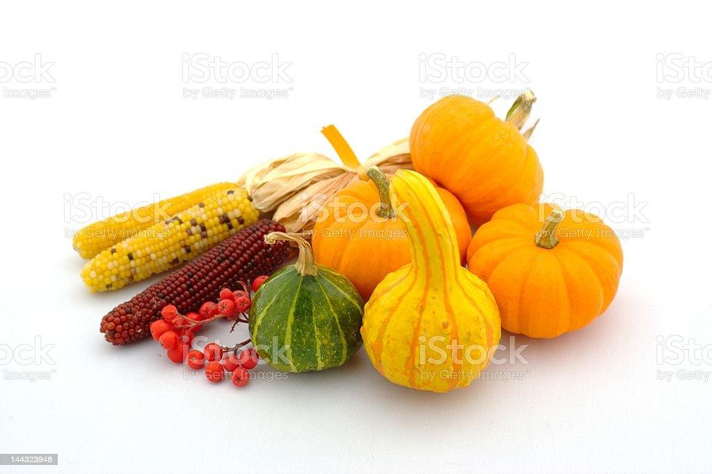 Fall Harvest Arrangement stock photo