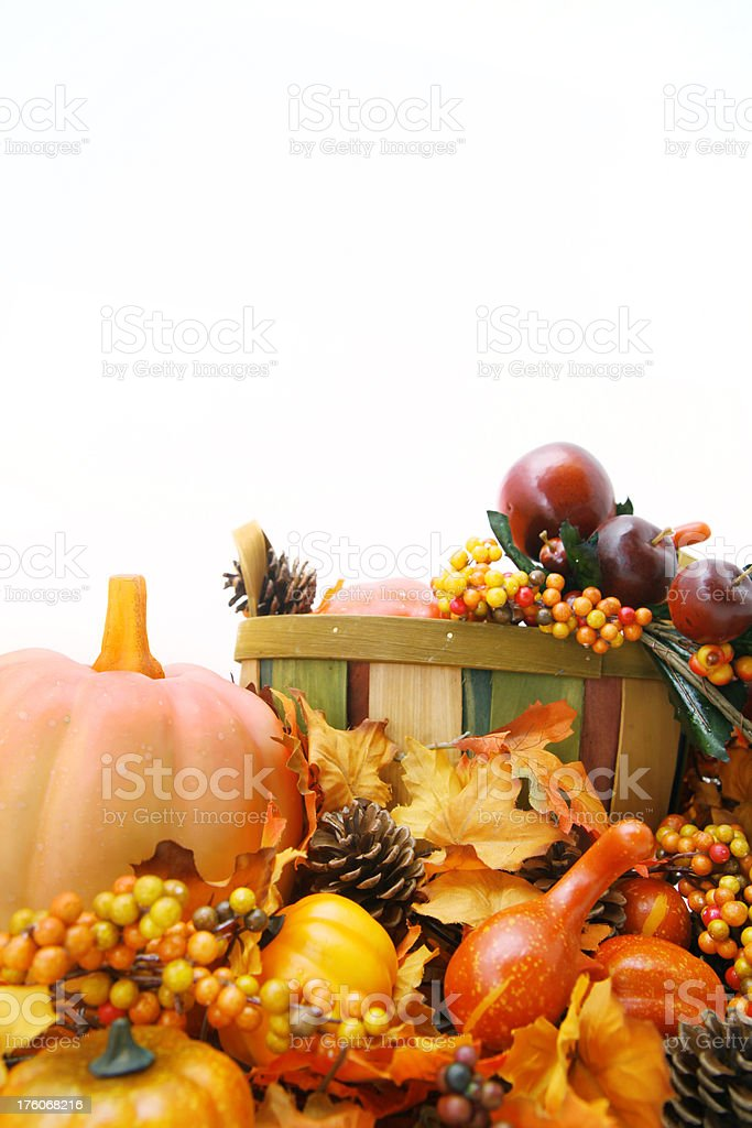 Fall harvest collection royalty-free stock photo