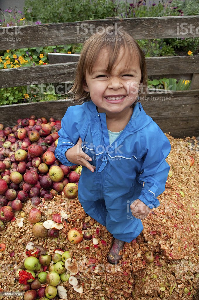 Fall Harvest Toddler stock photo
