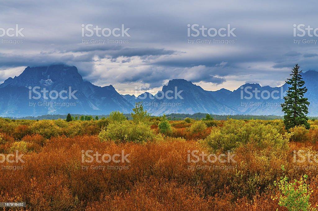 Fall in Grant Tetons stock photo