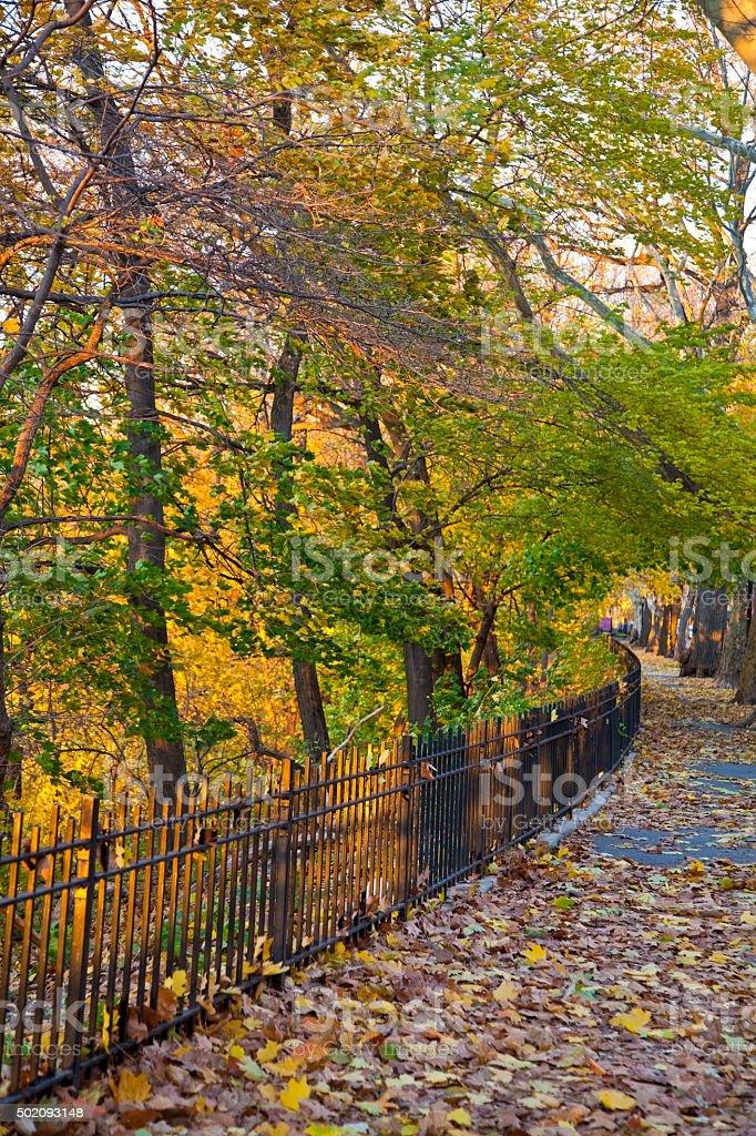 Fall in Riverside Park stock photo