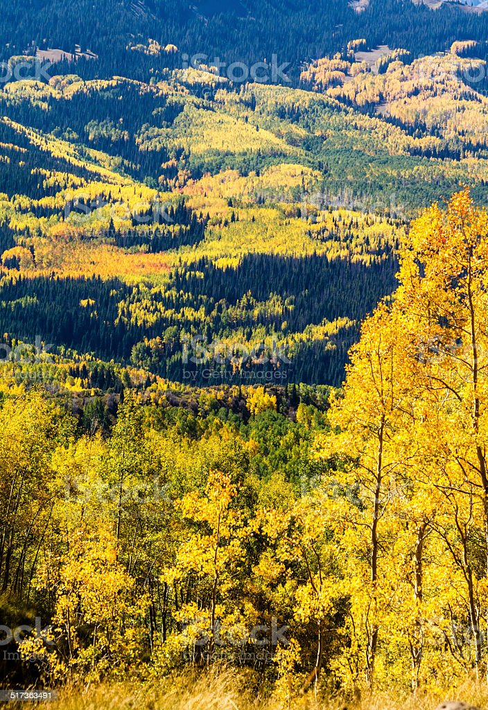 Fall in Steamboat Springs Colorado stock photo
