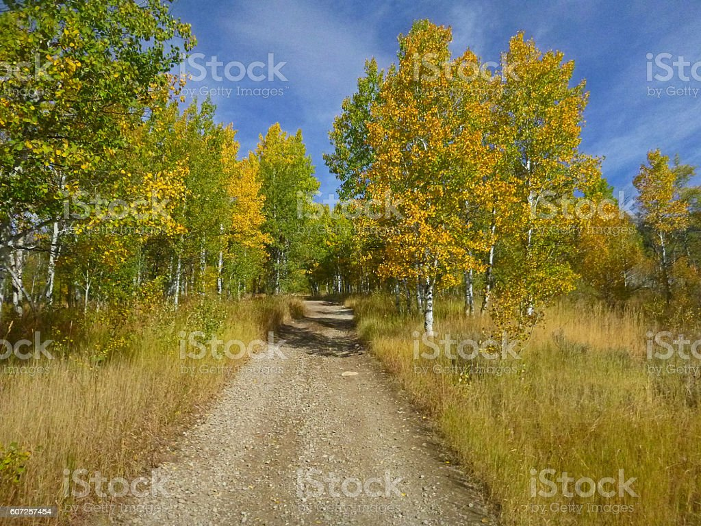 Fall in the Boulders stock photo