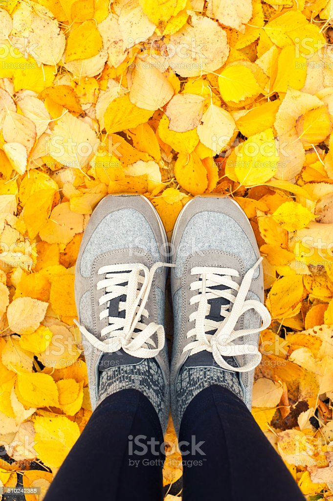 Fall in the city. Modern sneakers with yellow autumn leaves stock photo