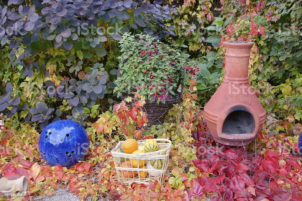 Fall in the garden royalty-free stock photo