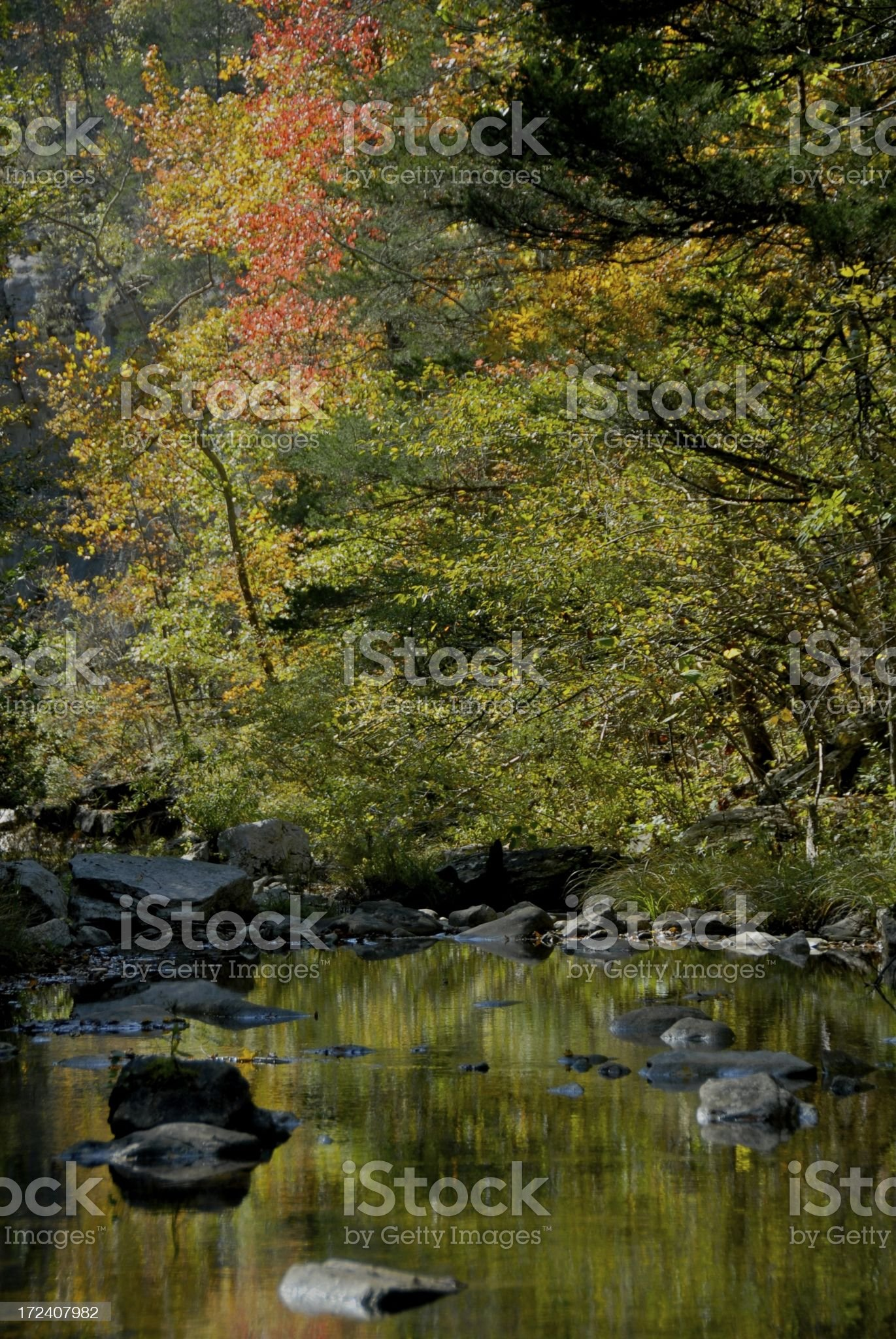 Fall in the Ozarks royalty-free stock photo