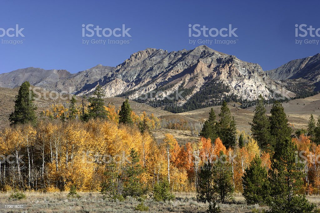Fall in the Sawtooths stock photo