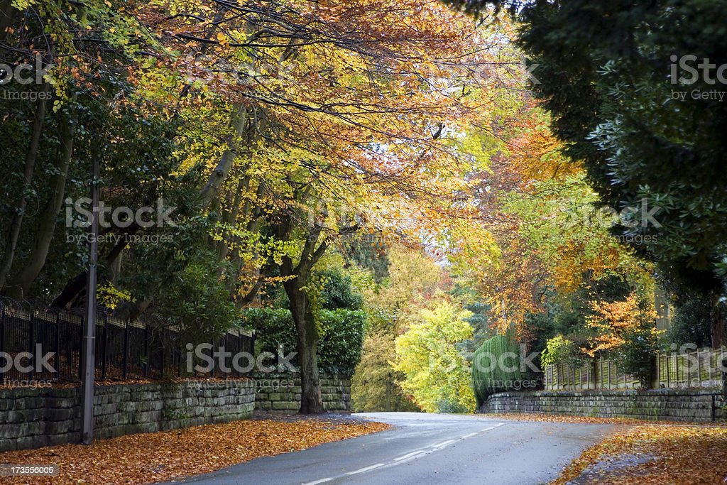 Fall in the suburbs royalty-free stock photo