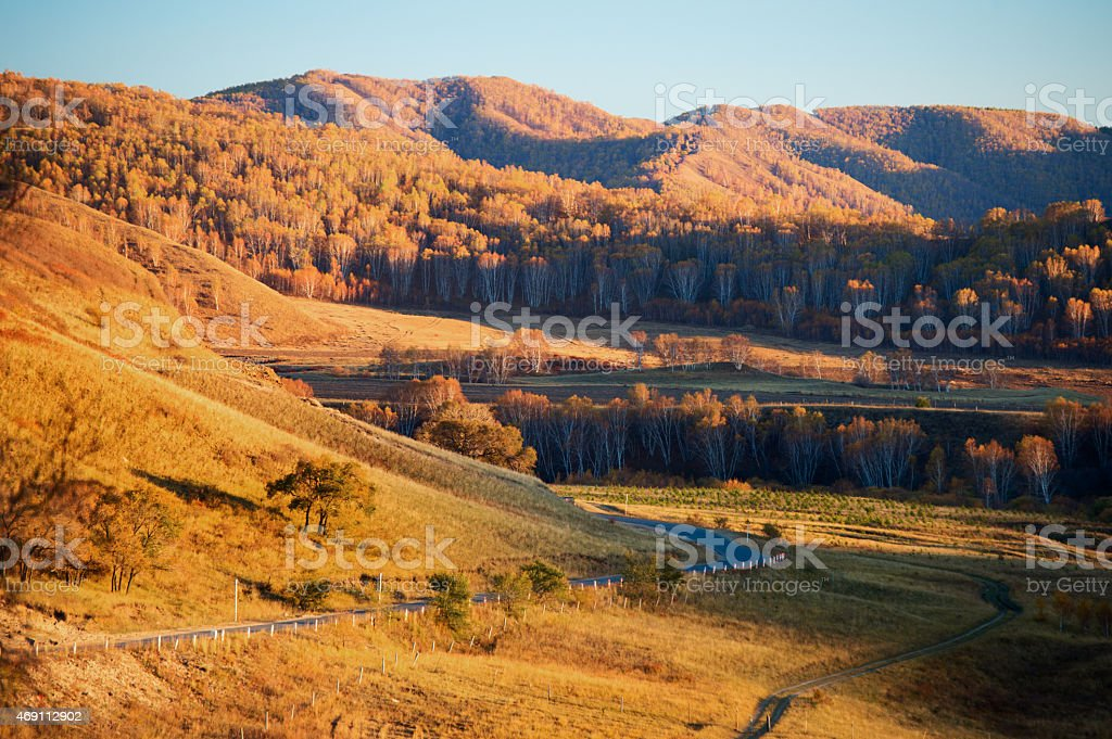 Fall is coming stock photo