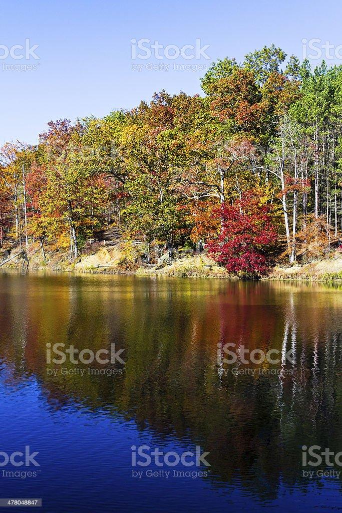 Fall Lakeside stock photo