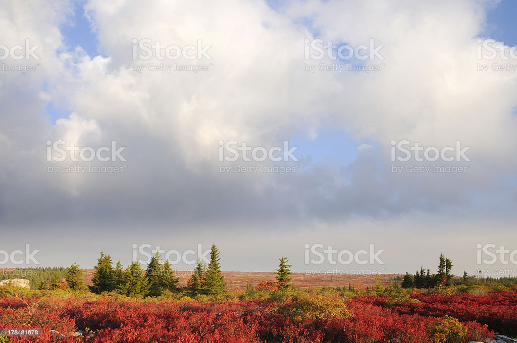 Fall Landscape with Dramatic Sky stock photo