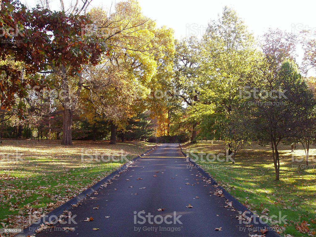 Fall Lane royalty-free stock photo