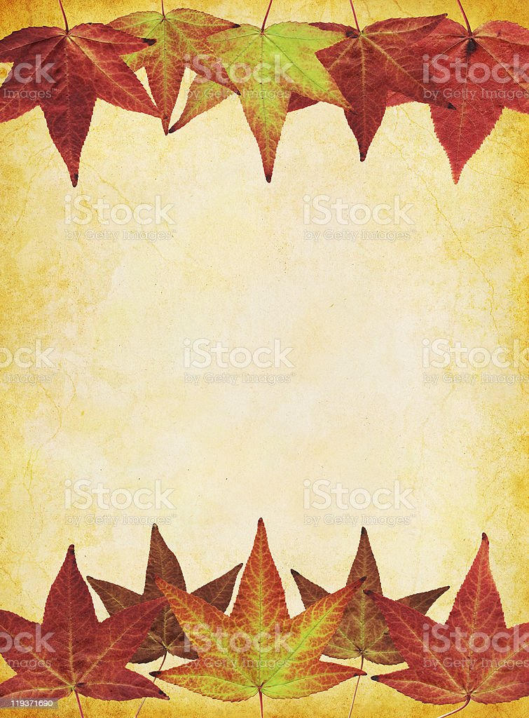 Fall Leaf Background royalty-free stock photo