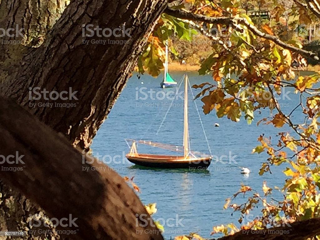 Fall leaves and boats stock photo