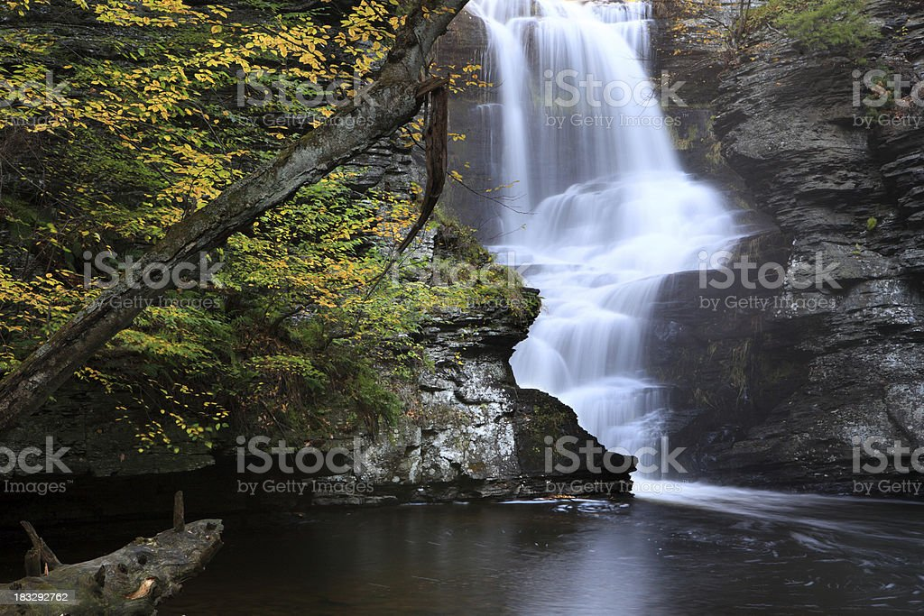 Fall leaves and water falls stock photo