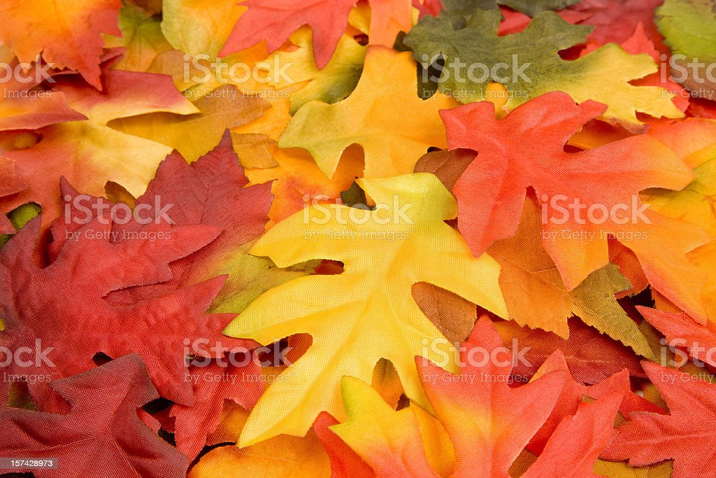 Fall Leaves, Autumn, Harvest, Natural-Pattern, Colorful Background, Decoration royalty-free stock photo