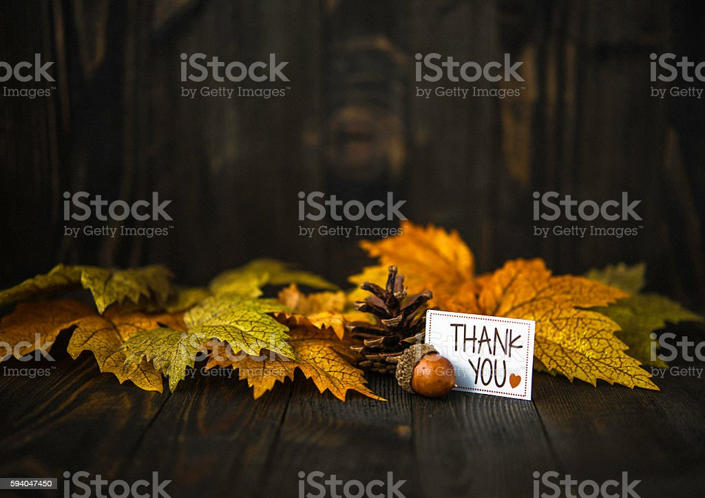 Fall leaves background with thank you message stock photo