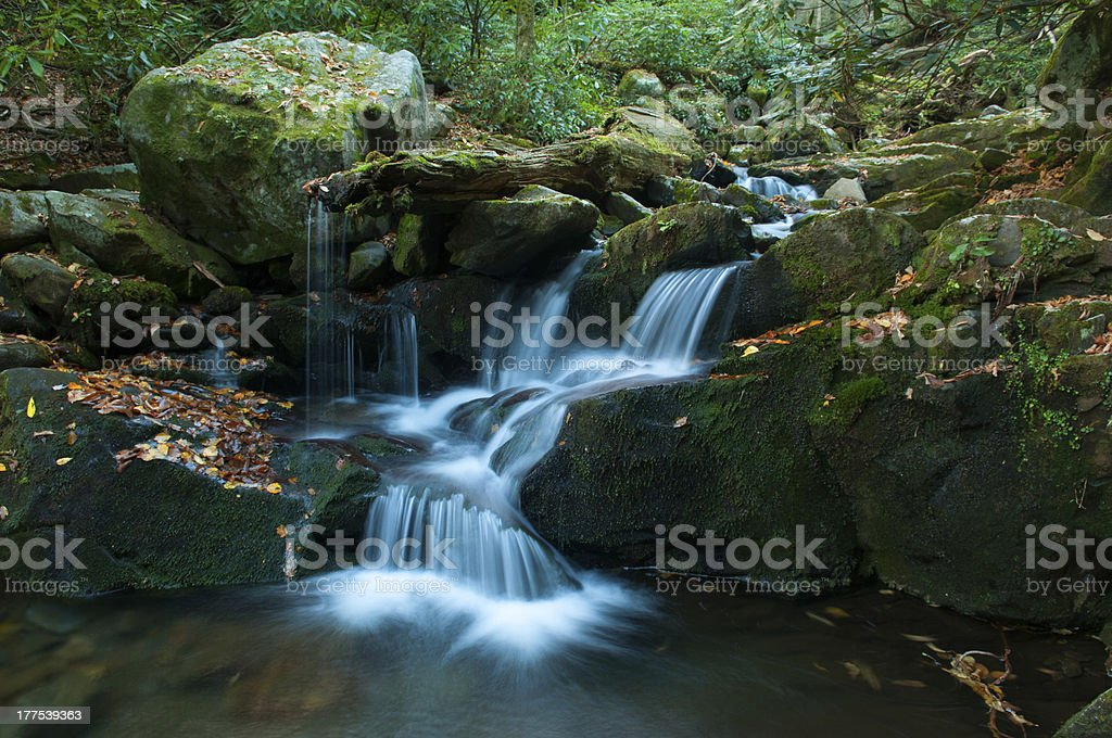 Fall Leaves Line waterfall at Grotto Falls in Gatlinburg, Tennessee stock photo