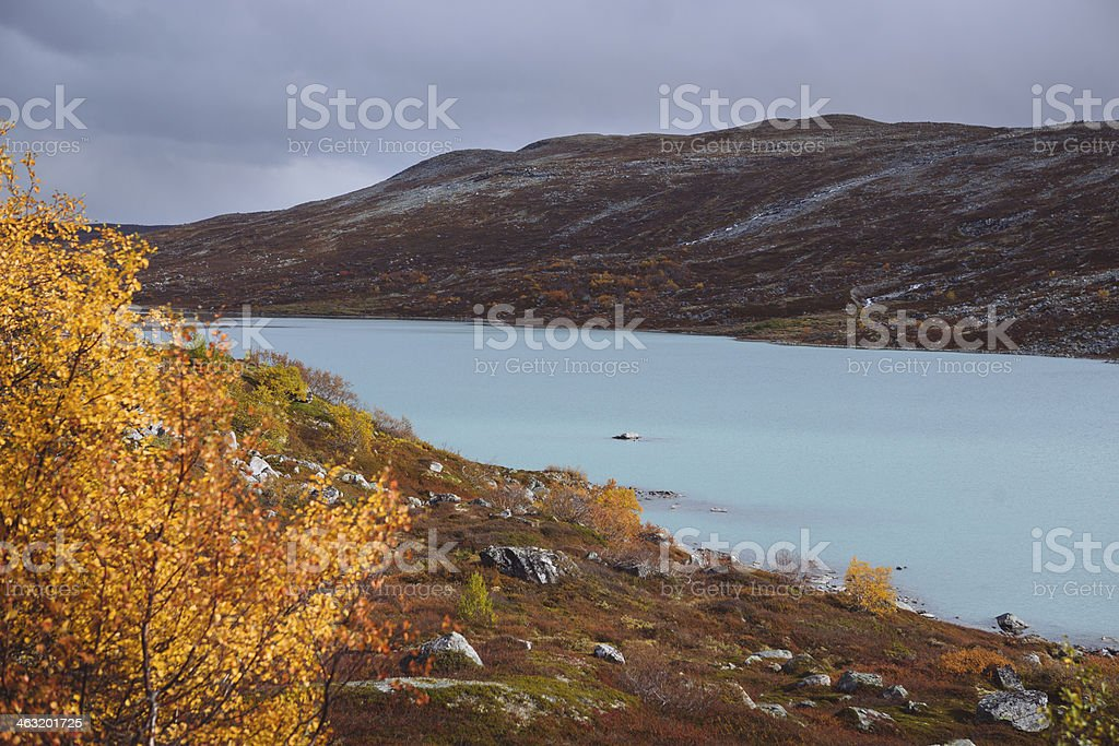 Fall Leaves - Old Strynefjell Mountain Road, Norway stock photo