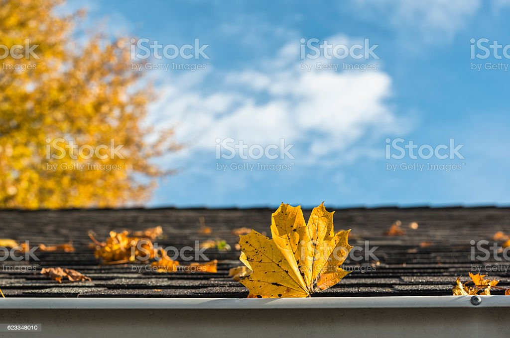 Fall leaves on roof and gutter of residential home stock photo