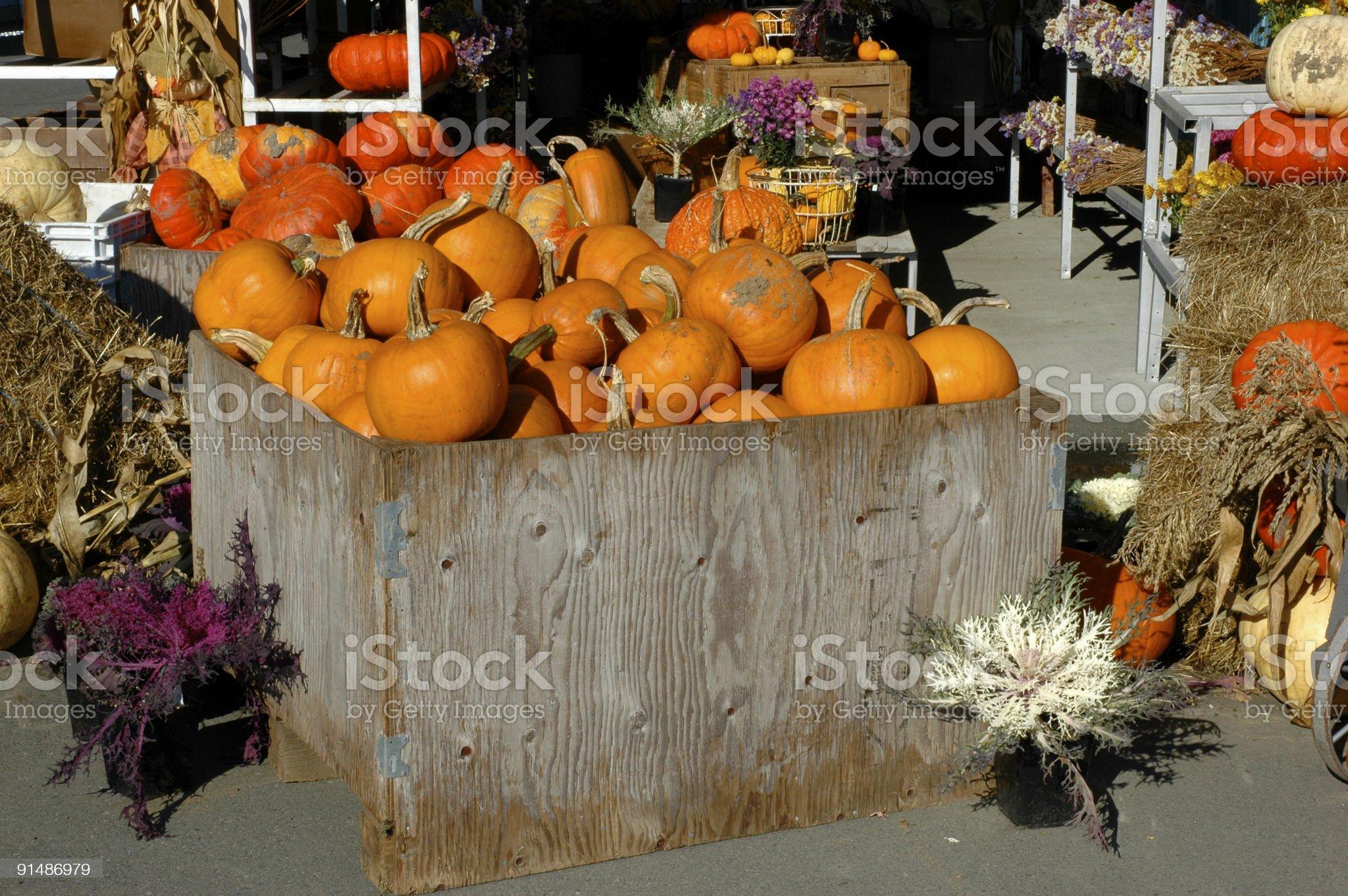 Fall market royalty-free stock photo