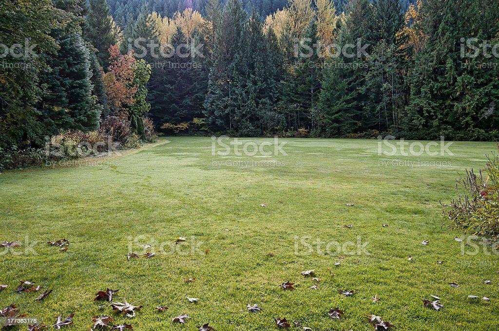 Otoño meadow foto de stock libre de derechos