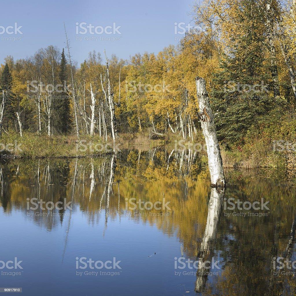 Fall mood landscape royalty-free stock photo