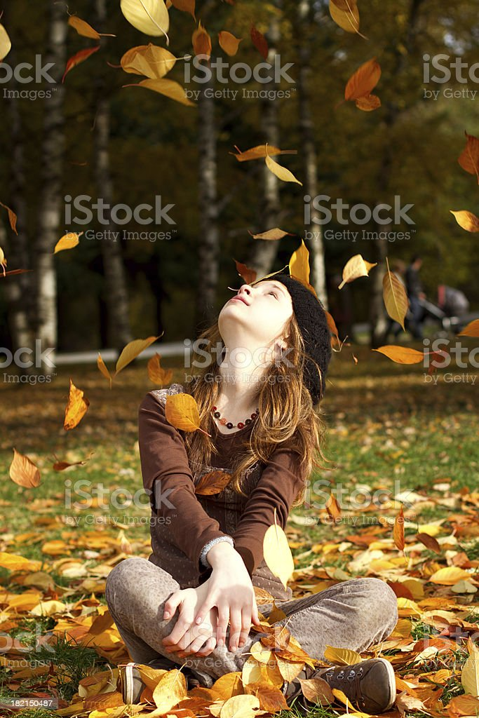 Fall of the Leaf stock photo