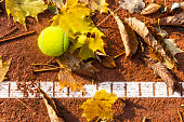 Fall on the clay tennis court