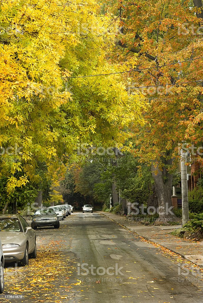 Fall on the street stock photo