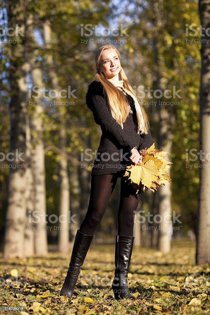Fall royalty-free stock photo