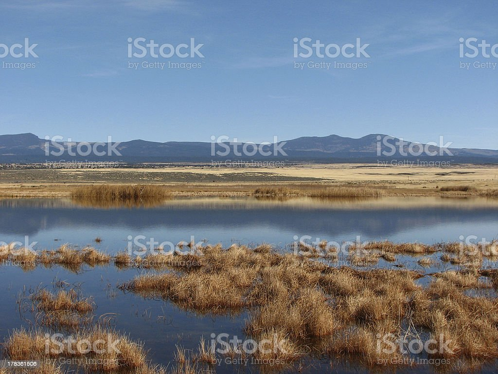 Fall pond and mountians stock photo