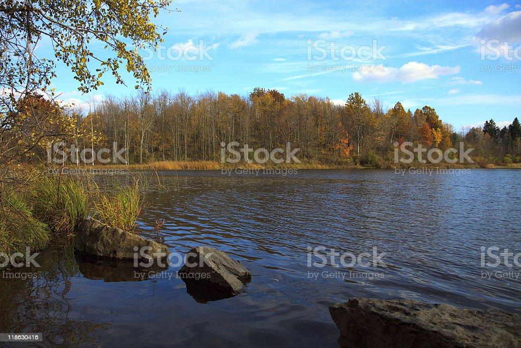Fall pond royalty-free stock photo