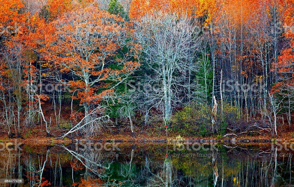 Fall Reflections Foliage Water stock photo