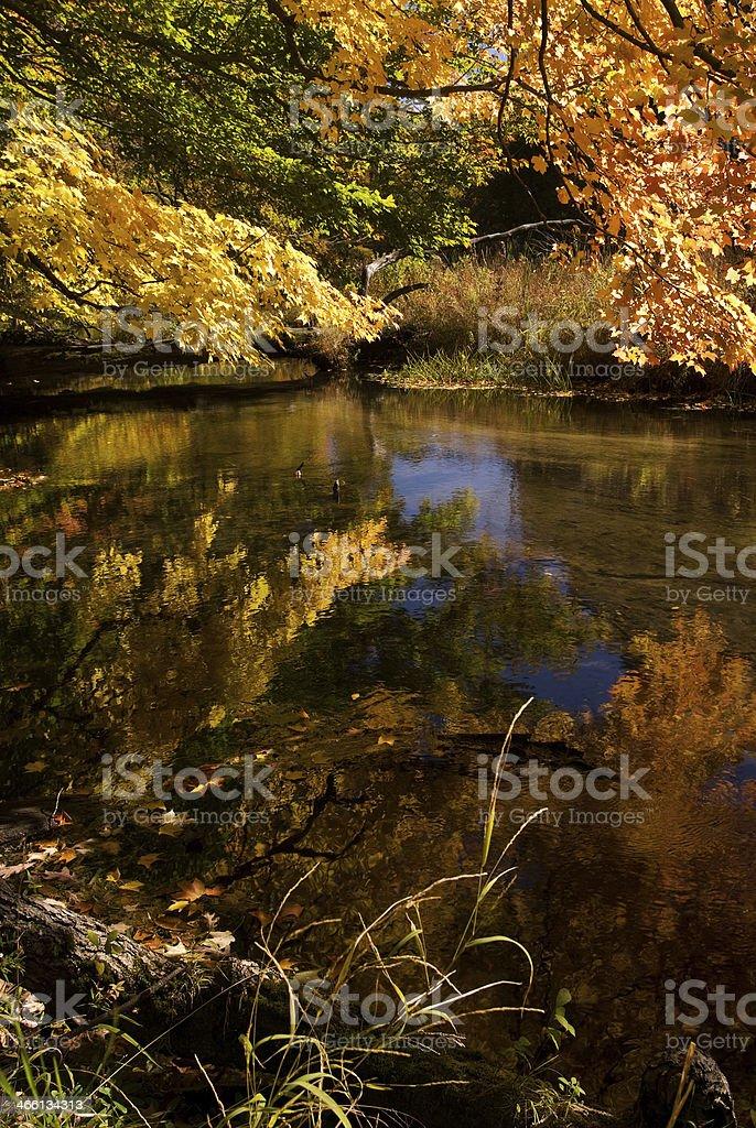Fall reflections on Cedar Creek stock photo