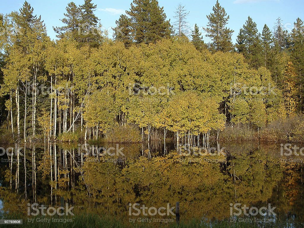 fall reflections royalty-free stock photo