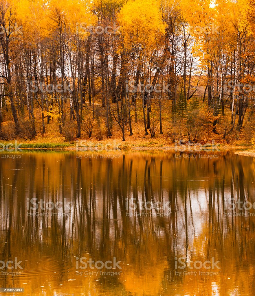 Fall refletion stock photo
