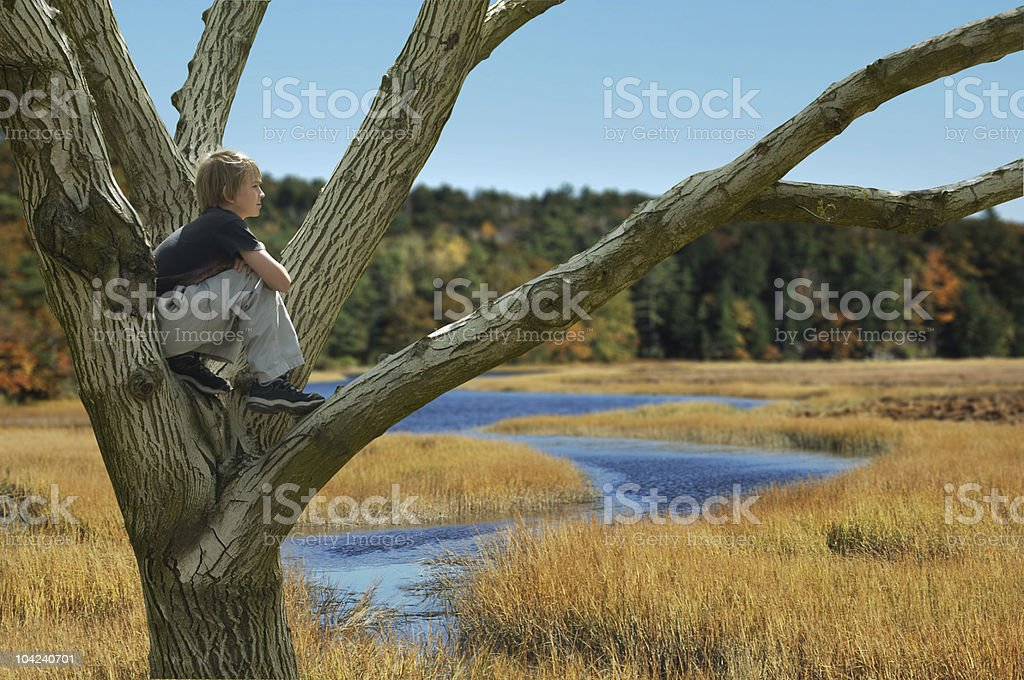 Fall Reverie royalty-free stock photo