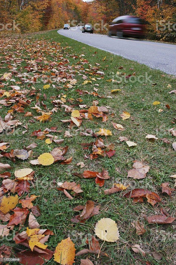 Fall Road royalty-free stock photo