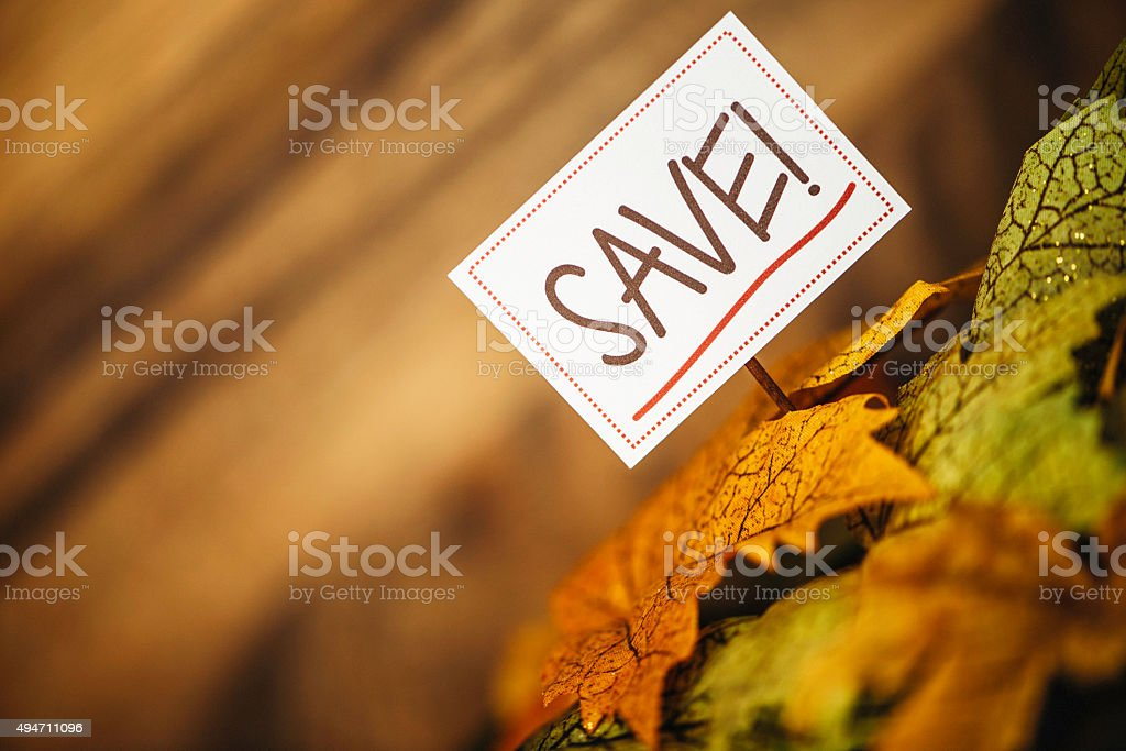 Fall Sale. Fall leaves with Fall Savings message stock photo