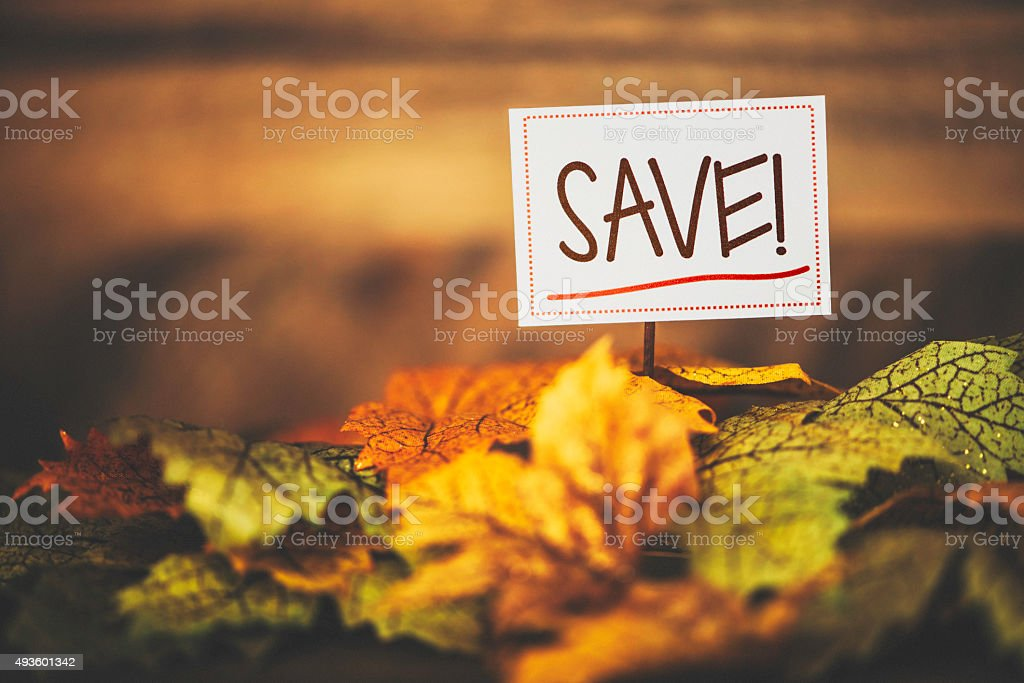 Fall Sale. Fall leaves with SAVE message stock photo